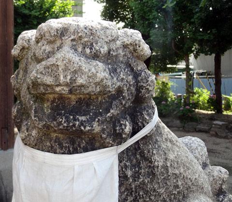 Kajigashimasumiyoshi0010